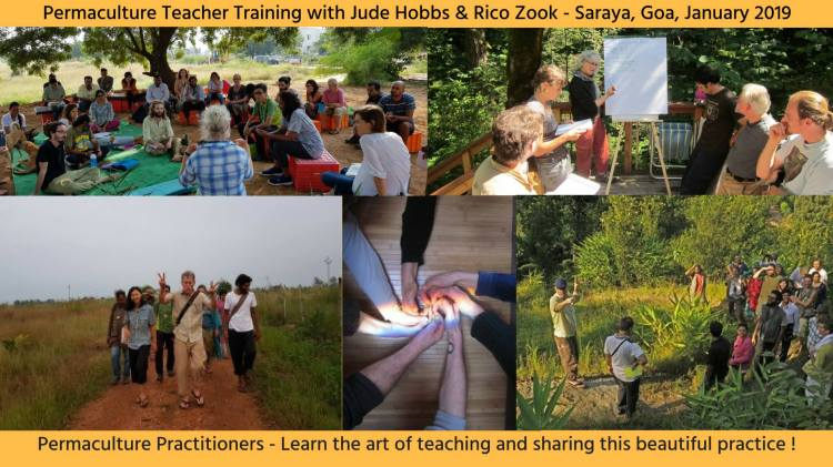 Permaculture Teacher Training Courses