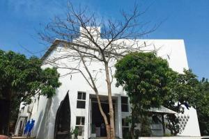 Museum of Goa,
