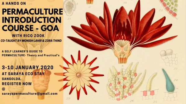 Permaculture Introduction & Hands On Course with Rico Zook at saraya, goa